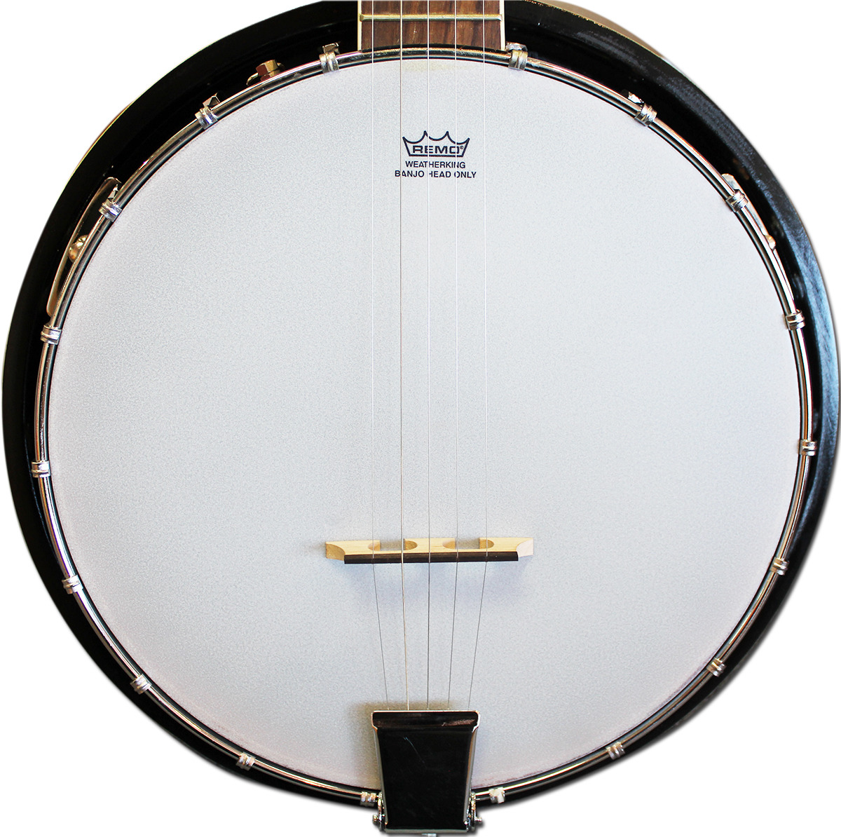 Best Beginner Banjo for Sale Australia