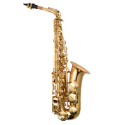 Prelude Alto Sax Outfit - Ideal for Adults and Children